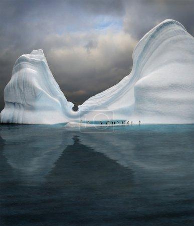 冰山是游泳池的企鹅