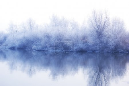 White winter landscape